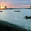 Waitukubuli Sunset by Robert Nickologianis