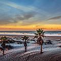 Wake Up For Sunrise In California by Ludmila Nayvelt