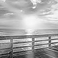 Waking Coast by Betsy Knapp