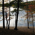 Walden Pond In Autumn by Sheila Savage