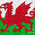 Wales Flag by Luis Alvarenga