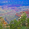 Walhala Overlook On North Rim Of Grand Canyon-arizona  by Ruth Hager