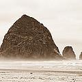 Walk Along The Ocean by Sabrina  Hall