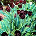 Walk Among The Tulips by John  Duplantis