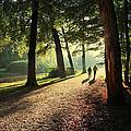 Walk by Annie Snel