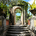 Walk In Vizcaya Gardens by Carol Groenen