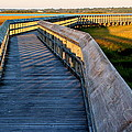 Walk Into The Sound by Rand Wall