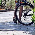 Walking And Biking by Tina M Wenger