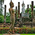 Walking And Sitting Buddha Images At Wat Sa Si In Sukhothai Historical Park-thailand by Ruth Hager