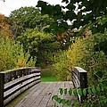 Walking Bridge by Bruce Bley