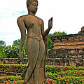 Walking Buddha Image In Wat Sa Si In Sukhothai Historical Park-t by Ruth Hager