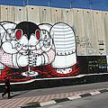 Walking By The Wall by Munir Alawi