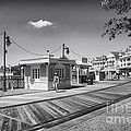 Walking On The Boardwalk In Black And White Walt Disney World by Thomas Woolworth