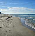 Walking The Beach by Sandy Keeton