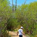 Walking The Ox Bow 2 by Brent Dolliver