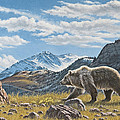 Walking The Ridge - Grizzly by Paul Krapf