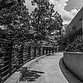 Walkway At Wharton Center by John McGraw