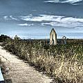 Walkway In The Marsh 2 by SC Heffner
