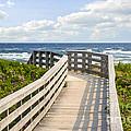 Walkway To Ocean Beach by Elena Elisseeva