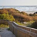 Walkway To The Beach by Allen Sheffield