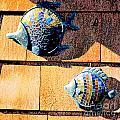 Wall Fish by Flamingo Graphix John Ellis