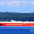 Wallenius Wilhelmsen Logistics Tamerlane Ship by Tap On Photo