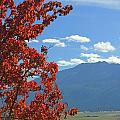 Dn5930-wallowa Valley In Fall by Ed  Cooper Photography