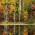 Walnut Creek Lake Autumn Reflection by Nathaniel Kidd