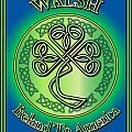Walsh Ireland To America by Ireland Calling