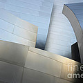 Walt Disney Concert Hall 1 by Bob Christopher