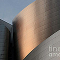 Walt Disney Concert Hall 15 by Bob Christopher