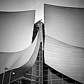 Walt Disney Concert Hall. by Ismael Roman