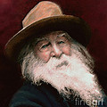 Walt Whitman by John Travisano