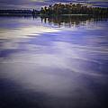 Wanigan View Of Au Sable River by LeeAnn McLaneGoetz McLaneGoetzStudioLLCcom