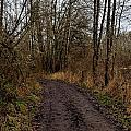 Wapato State Access Area by Sara Edens