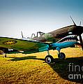Warbird Curtiss P-40 E by Robert Kleppin