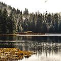 Ward Lake Shack by Peter Epler