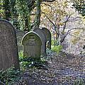 Wardsend Cemetery by Jerry Daniel