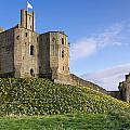 Warkworth Castle In Spring by David Head