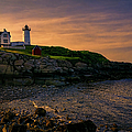 Warm Nubble Dawn by Joan Carroll
