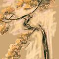 Warm Tree by Go Van Kampen