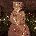 Warm Weather Snowman by Bob Phillips