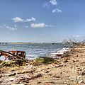 Washed Ashore by Rick Kuperberg Sr