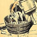 Washed By Mary - A Dog Day Collection 4 Of 27 by Cecil Aldin