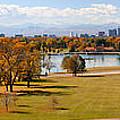 Washigton Park  by Lena Cohen