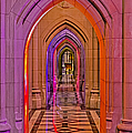 Washington Cathedral Light Show by Susan Candelario