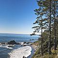 Washington Coast by Ronald Lutz
