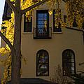 Washington D C Facades - Dupont Circle Neighborhood In Yellow by Georgia Mizuleva