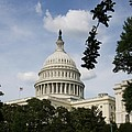 Washington Dc Capitol Dome by Christiane Schulze Art And Photography