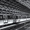 Washington Dc Metro Station Vi by Clarence Holmes